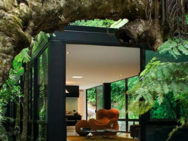まさに自然界!究極の「フォレストハウス」