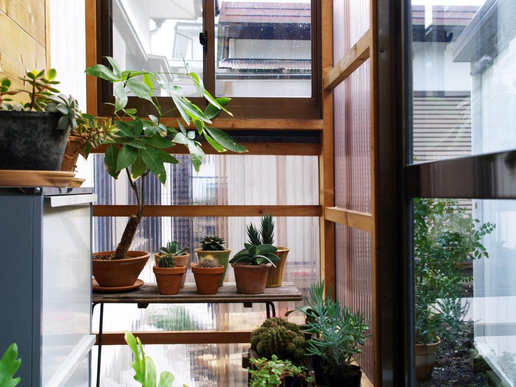 温室として大活躍の現在のサンルーム
