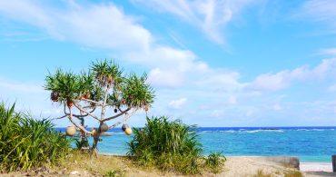 第1回:東京生まれの小説家が島に来たいきさつ|女子的リアル離島暮らし