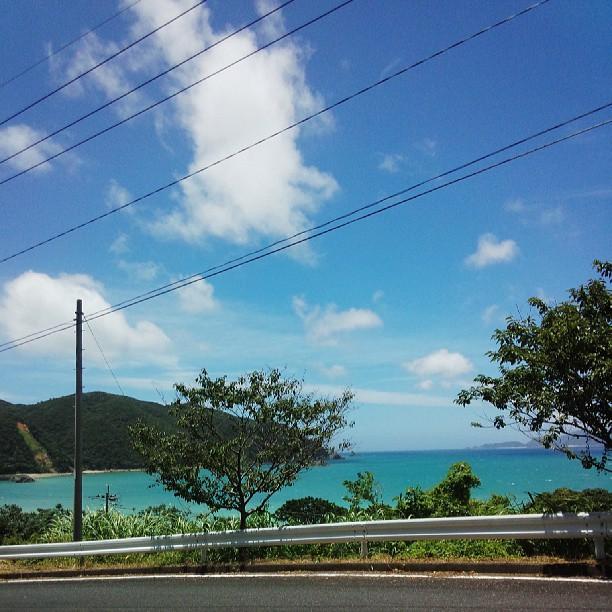 自宅から生間港まで行く時の風景。見とれて、ひとり道端で「きれい!」なんて叫んだり。