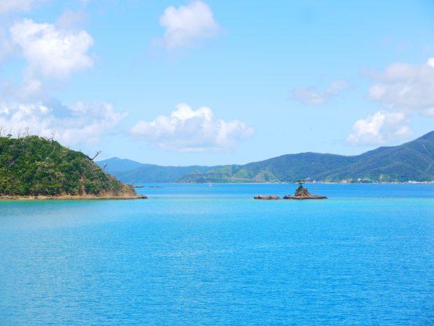 生間港の待合所からは、海にぽっかり浮かぶ小さな浮島に松が一本だけ生えている景色が見えます。