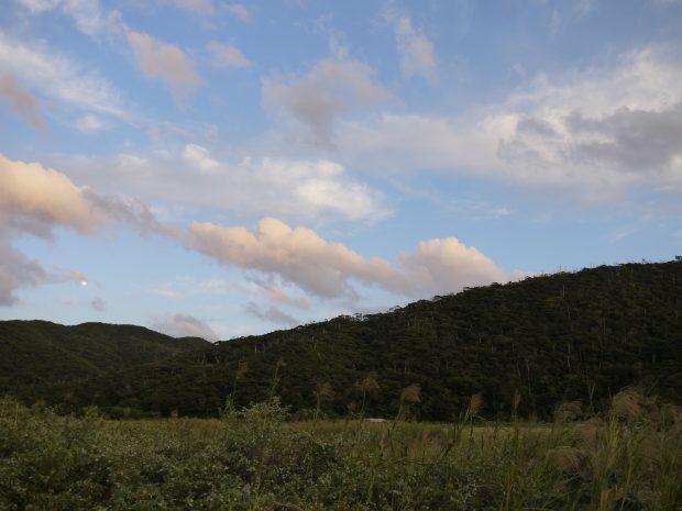 加計呂麻島は海だけじゃなく山も豊か。この景色を守ってきたのが島の方々です。