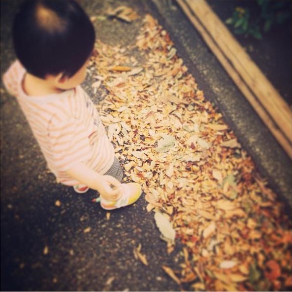 小さい秋みーつけたっ|豊かさとは