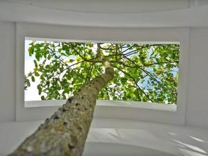 love-tree_03