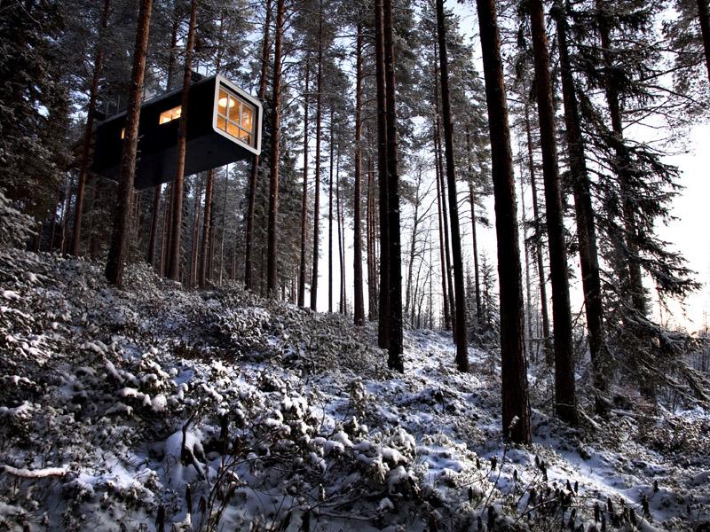 白夜とオーロラを楽しもう!スウェーデンで最も美しい森に建つツリーハウス「The Cabin」