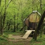 おしゃれなパリジャンの隠れ家! 彼らが休日を過ごす、どんぐりみたいでかわいい森の家「Le Nichoir」