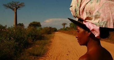 第1回:人間ルーツの暮らし|アフリカの暮らし