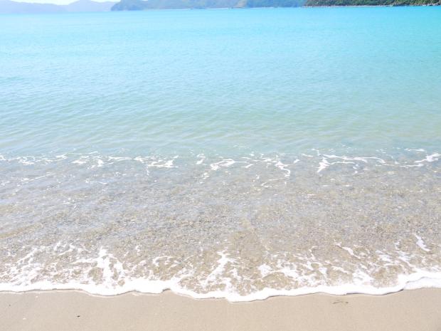 島に来て初めて見たのがこの海。 透き通った海はとても綺麗だけれど、同時に恐ろしいものでもあることは加計呂麻島に来てわかるようになりました。