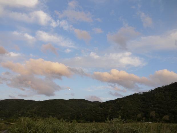家の近くの山々は、きっとそろそろみずみずしい新緑が見える頃。