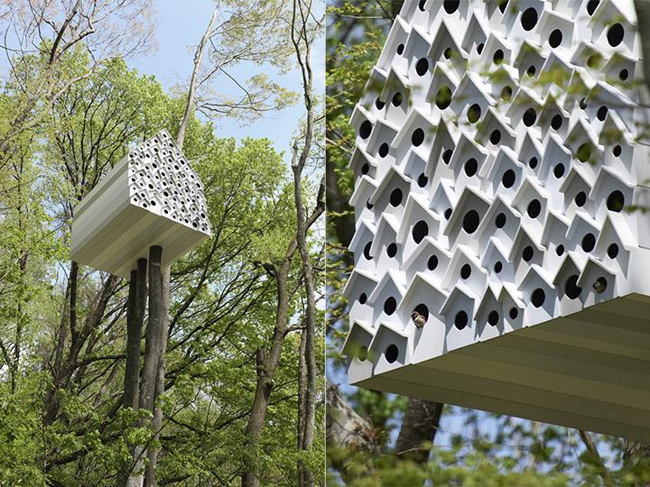 鳥と暮らせるアパート! 森の中の鳥たちと人間をつなぐ「bird-apartment」