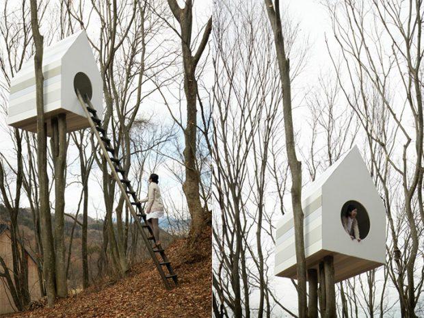 bird-apartment_02