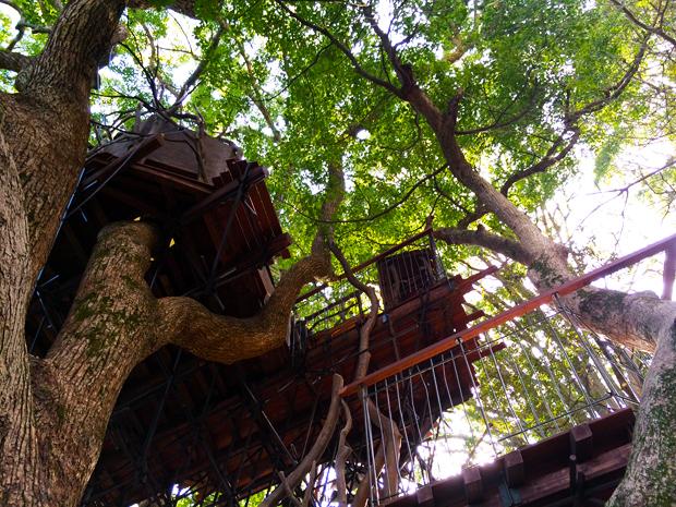 treehouse_atami1b
