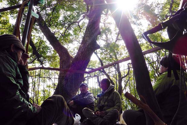 treehouse_atami5c