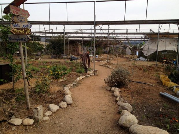 イスラエル北部のパーマカルチャーコミュニティ