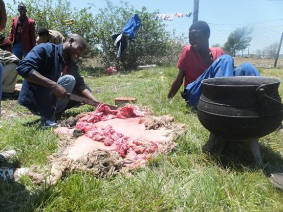 絞めた羊はその場でカットされ、横に置かれた大きな鍋に入れていく。これから食べるご馳走に笑顔がもれる。
