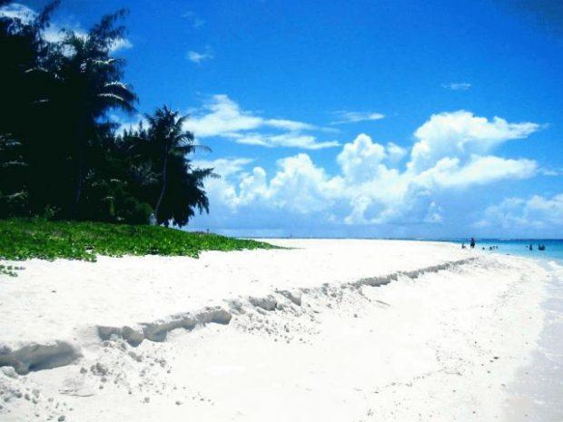 真っ白な砂浜