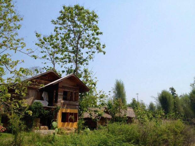 タイ北部でパーマカルチャー農業ボランティア-2