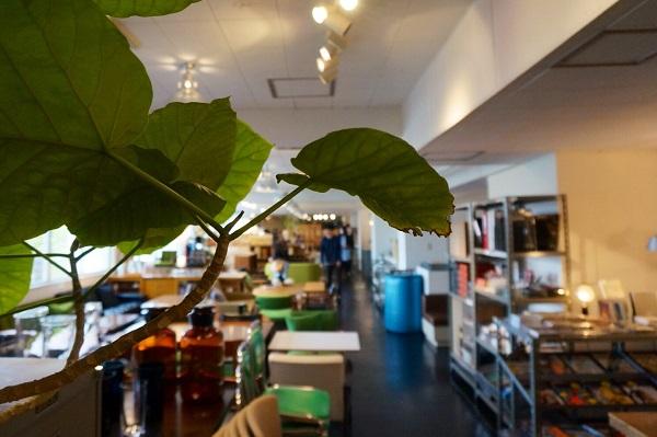 D&DEPARTMENT東京店の「d SCHOOL」、今回のレクチャーはお店の2階。バラエティ豊かにディスプレイされた雑貨やインテリア売り場の奥で行われました。
