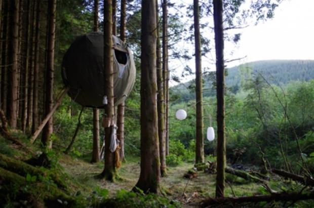 木々の間に浮かぶのは、大きな鳥の巣?それとも人の巣?「ツリーテント(Tree Tents)」