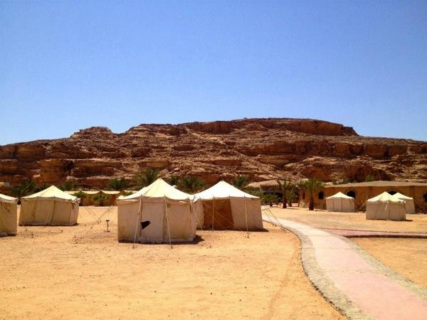 第3回:帰国子女、未来の農業「アクアポニックス」にヨルダンの砂漠で出会う|脱線帰国子女、農を求む