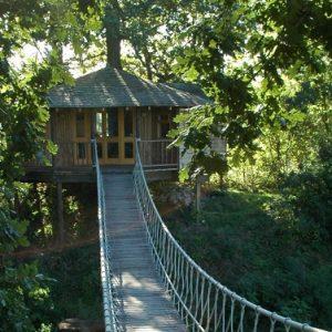 Bensfield-Tree-House1