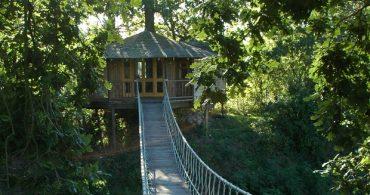 誰もが童心に返っちゃう、大人のための秘密のツリーハウス「Bensfield Treehouse」
