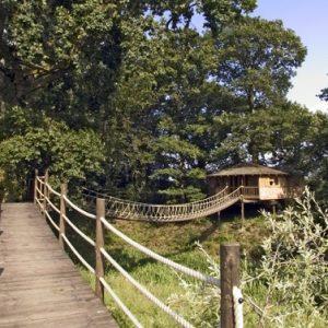 Bensfield-Tree-House7