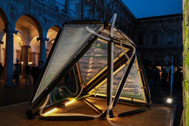 光合成で空気清浄ができちゃう「Urban Algae Canopy」