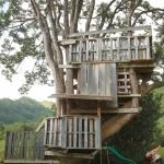 緑深いカウアイ島で自然と調和しながら暮らす 「Grateful Shed」