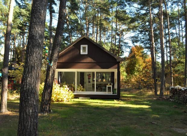 静寂の中に動物の足音が聞こえてくる家「Forest House」