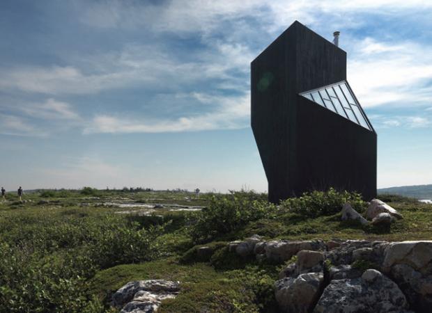 湿原の中のフクロウは何を見つめる?「tower-studio」