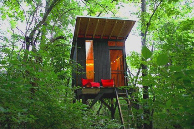 樹上の秘密基地、1,500ドルで作った子供のための小さな家「Tiny Tree House」