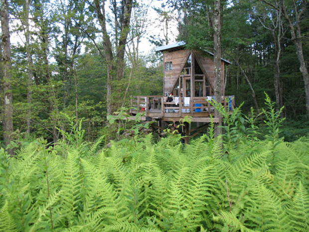 The Wee Treehouse04