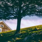 【特集コラム】第4回:日本でだって手に入る、夏の家(サマーハウス)の様々なカタチ|豊かさってなんだろう?北欧から学ぶ暮らし方