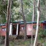 老いた鉄道車両の見る夢「The Little Red Train Carriage」