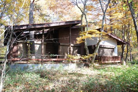 森とともに成長する家