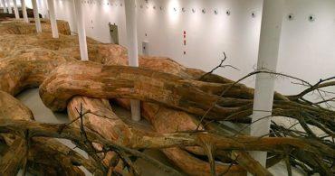 展示フロアを浸食するアート、木の根に諸行無常を見る「Transarquitetonica」
