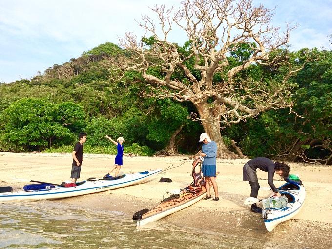 無人のビーチに上陸! 真ん中の木はデイゴという木。