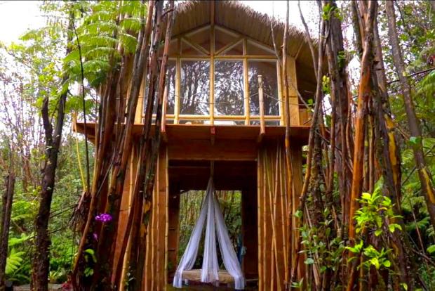 【後編】アラサー女子、ハワイのワケ有り土地に隠れ家コテージを建てる「Tiny House on the Big Island」