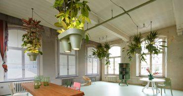 オフィスに浮かぶ植物の鉢「頭上ジャングル」