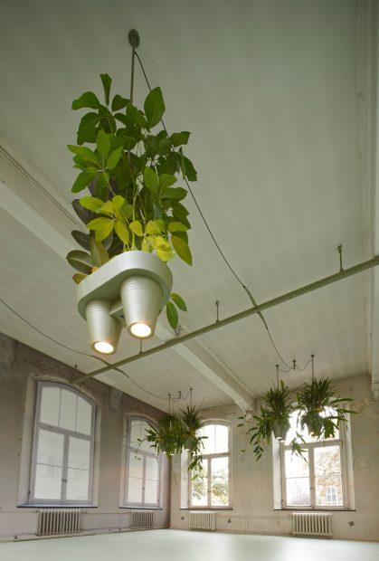 roderick-vos-bucketlight-plant-fixture-designboom06