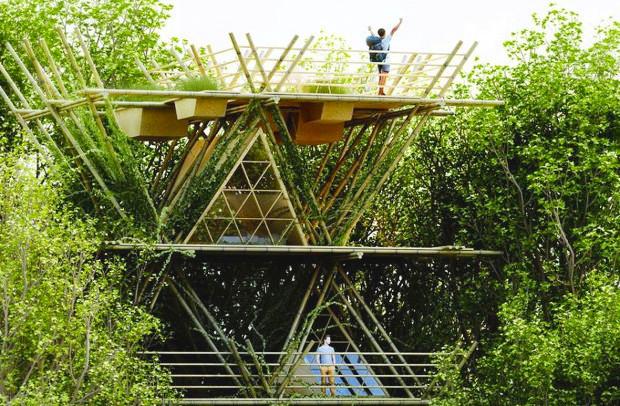 木に留まる鳥のように過ごす、可変性もある竹のホテル「One With the Birds」