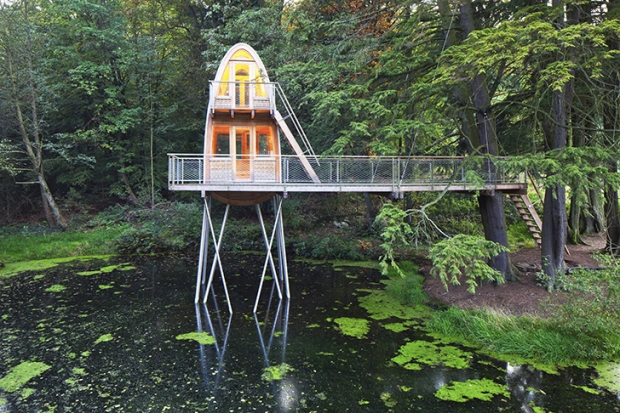 Baumraum-Solling-Treehouse-1