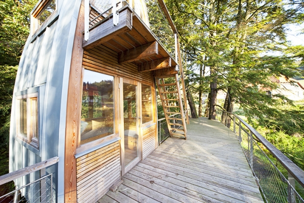 Baumraum-Solling-Treehouse-2