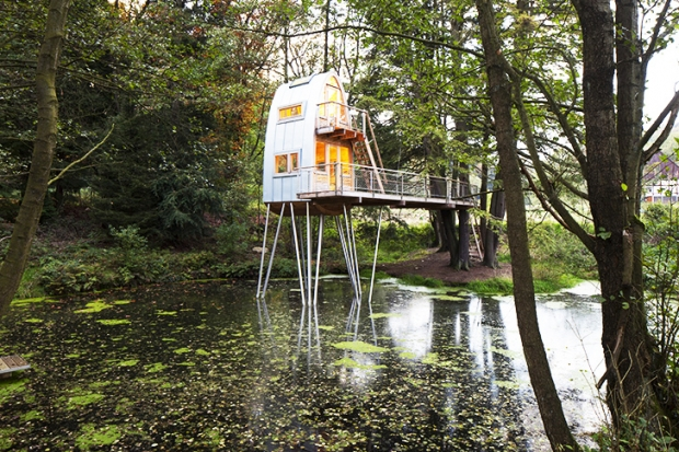 Baumraum-Solling-Treehouse-3
