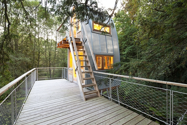 Baumraum-Solling-Treehouse-4