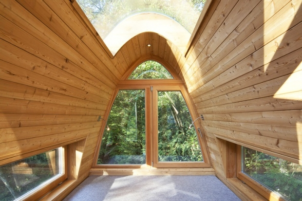 Baumraum-Solling-Treehouse-6