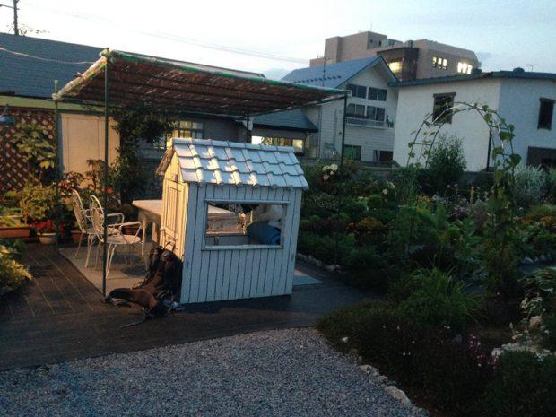2014年7月15日 青森県十和田市の住宅の庭を借りた