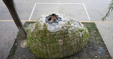 暮らすことでメッセージを、社会への疑問から生まれた植物のお家「Egg house」