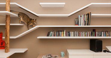 猫と共生するオフィス「Cat House」